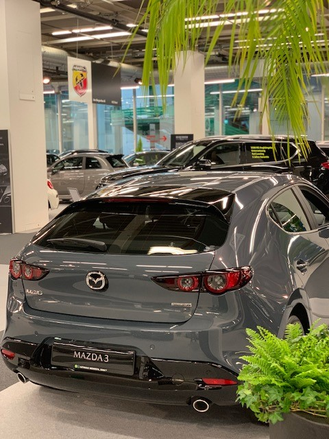 https://garage-wendelspiess.mazda.ch/wp-content/uploads/sites/97/2021/02/Expo-Auto-Mobil-Basel-2019-3-1.jpg